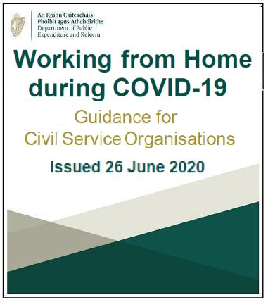 Working from Home during Covid-19 Guidance for Civil Service Organisations.pdf